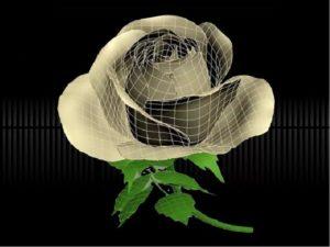 трехмерный цветок